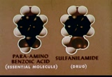 Still frame from: Biochemistry and Molecular Structure